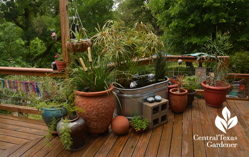 stock pond deck Central Texas Gardener
