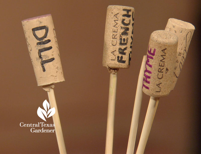 wine cork and skewer plant tags Central Texas Gardener