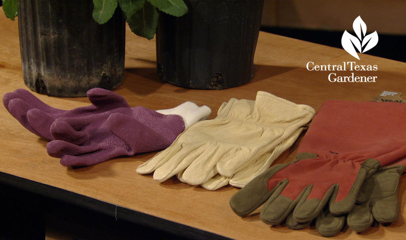 gloves for gardeners Central Texas Gardener