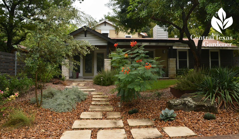 Powerful Perennials New Ideas For Old Front Yard Central Texas Gardener