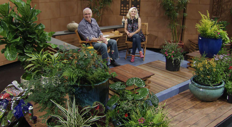 Tom Spencer and Liz Morphis hot weather color Central Texas Gardener