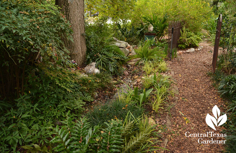 front and backyard stream garden rooms Central Texas Gardener