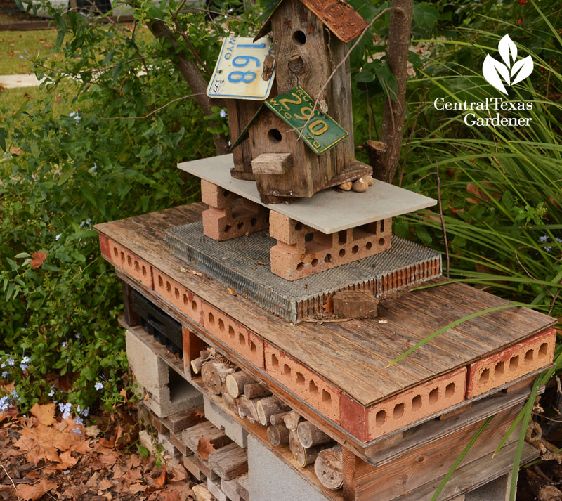 homemade insect hotel Central Texas Gardener