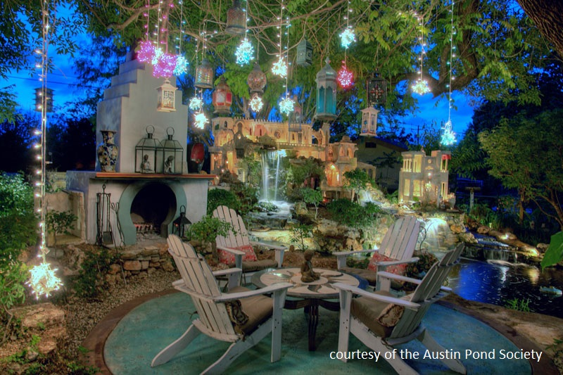 magical night time pond Austin Pond Society Central Texas Gardener