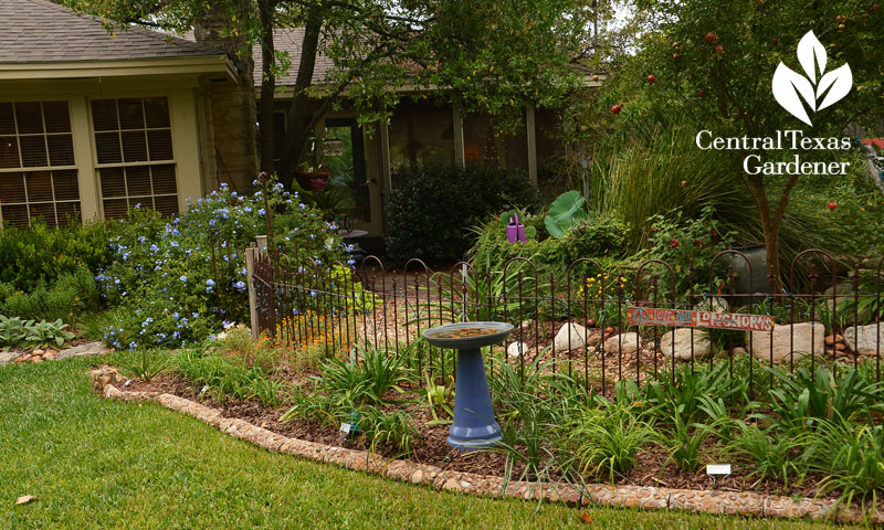 old iron fence cute garden room surround Central Texas Gardener