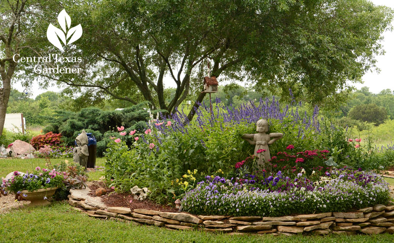 raised bed spring flower garden Central Texas Gardener