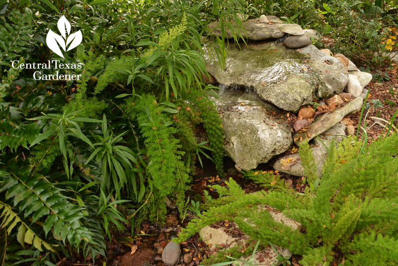 rock waterfall front and backyard stream Central Texas Gardener