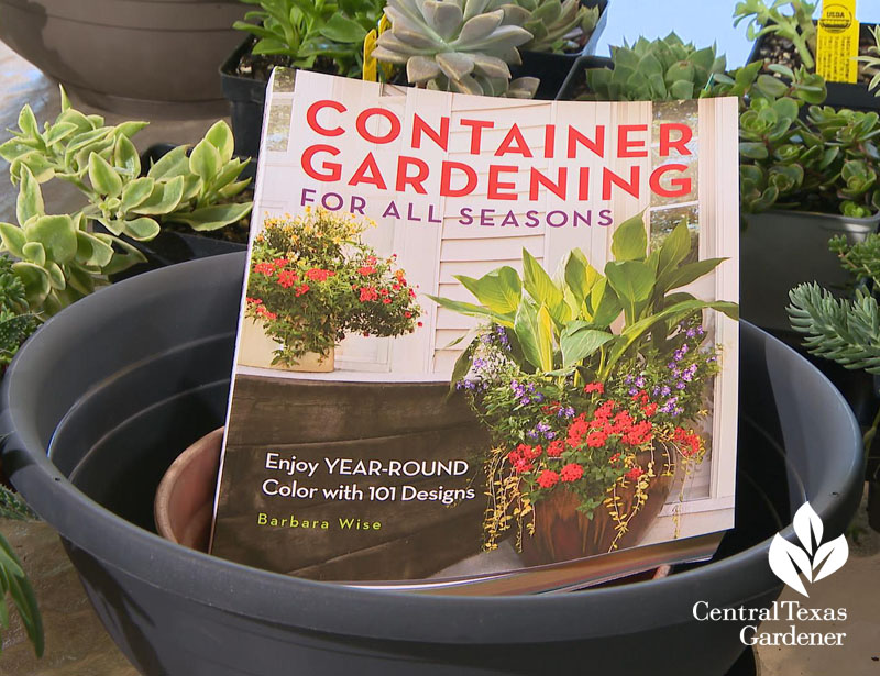 Container Gardening for All Seasons Central Texas Gardener