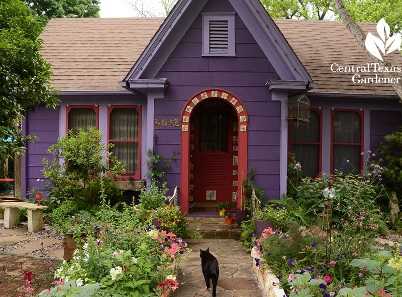 Lucinda Hutson's purple cottage front yard garden Central Texas Gardener