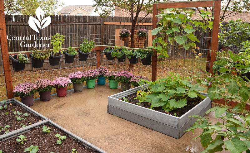 composite decking raised gardeners fence planters Central Texas Gardener