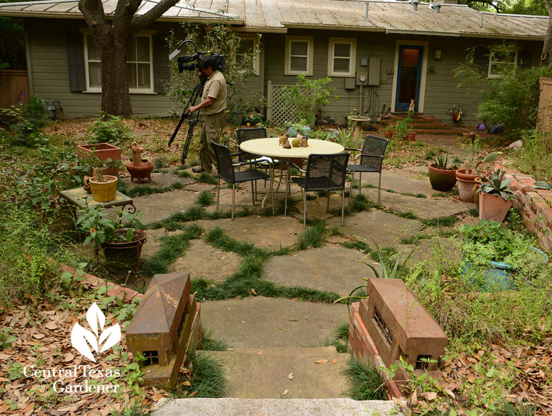 flagstone patio bordered with native plants Central Texas Gardener