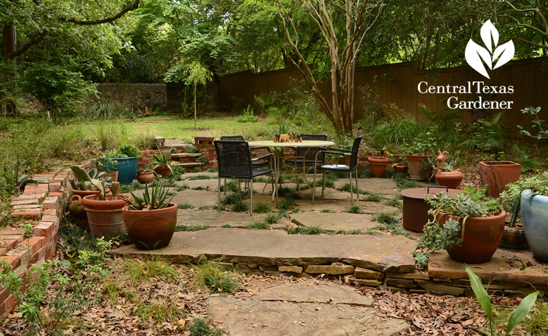flagstone patio brick raised bed native plants Central Texas Gardener