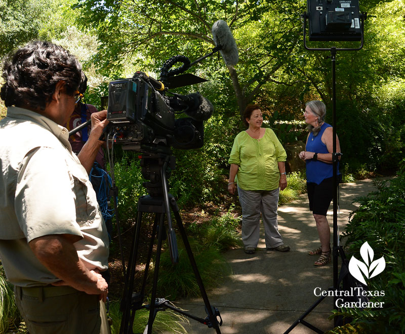 Trisha Shirey and Barbara Wise talk shade plants Central Texas Gardener