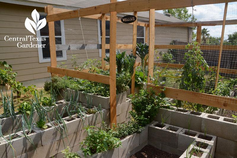 Super Foods Super Cinder Block Vegetable Garden Central