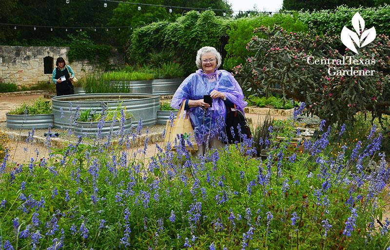 Entrances to Ideas: Garden Bloggers Fling Austin | Central Texas ...