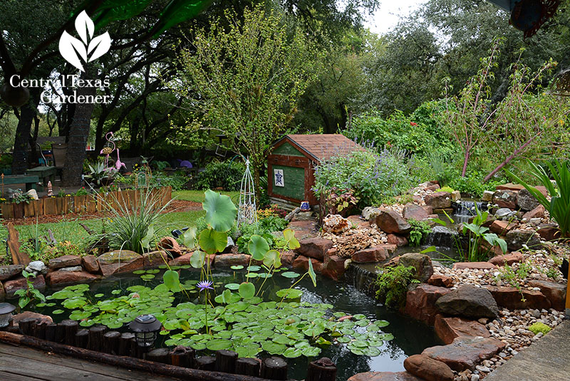 gorgeous small pond and waterfalls natural look Ferrier and Monfrini garden Central Texas Gardener
