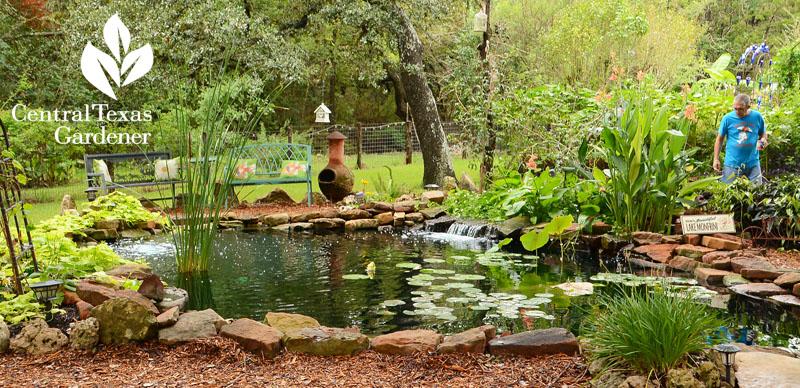 koi pond natural design and filtration Jeannie Ferrier and Steven Monfrini Central Texas Gardener