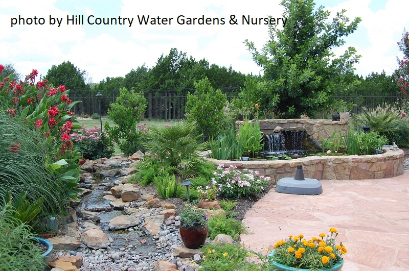 Steve Kainer, Founder Of Hill Country Water Gardens U0026 Nursery, Recognized  Our Dream Long Ago And Set About Making It Come True.