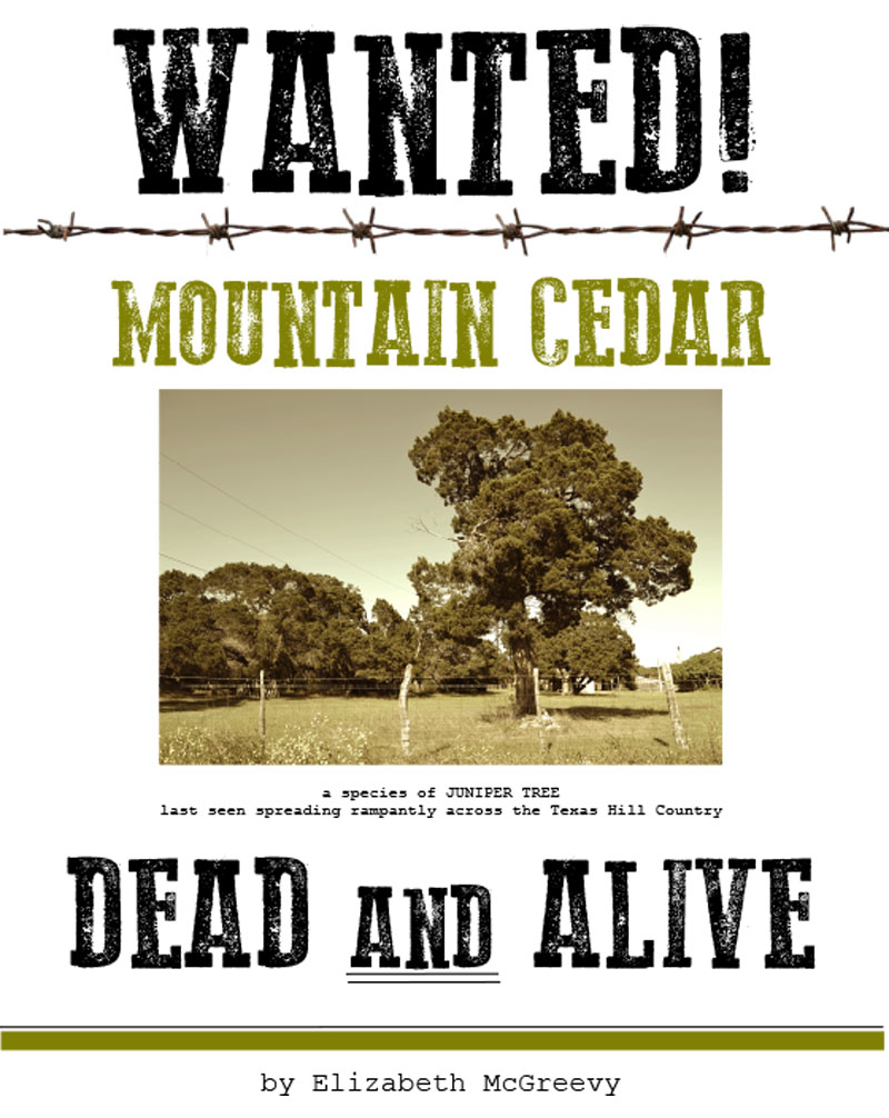 Elizabeth McGreevy book Wanted Mountain Cedar Dead and Alive Central Texas Gardener