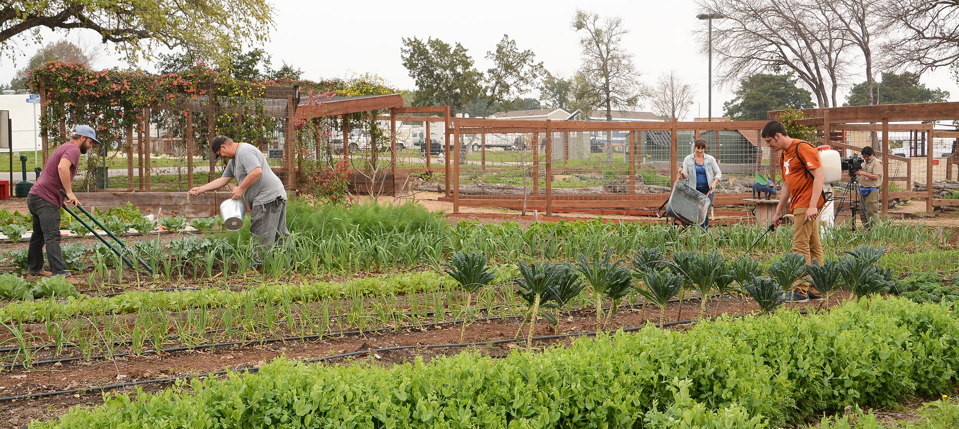 garden-Community-First