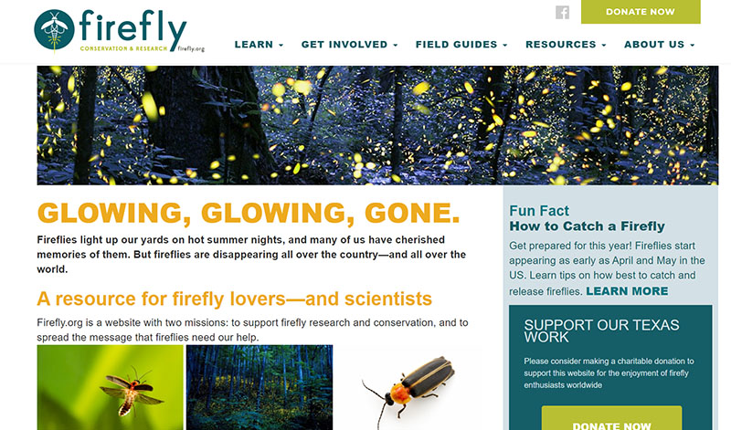 Firefly Conservation and Research Central Texas Gardener
