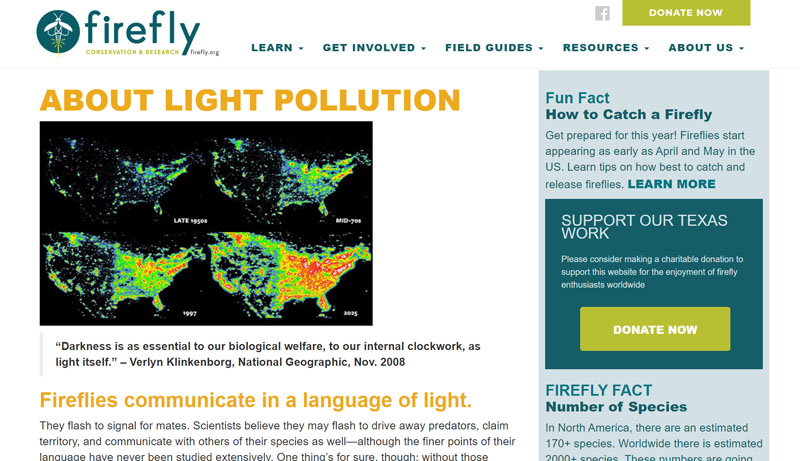 Firefly Conservation and Research light pollution Central Texas Gardener