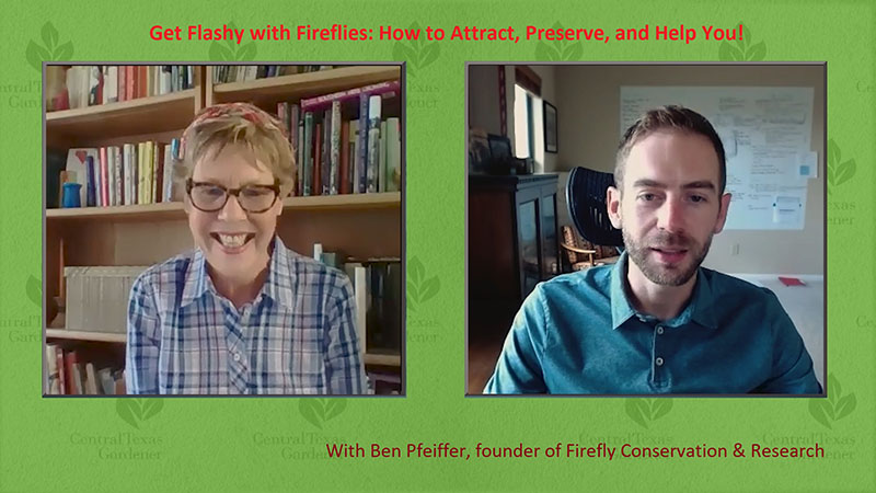 Linda Lehmusvirta and Ben Pfeiffer Firefly Conservation and Research Central Texas Gardener