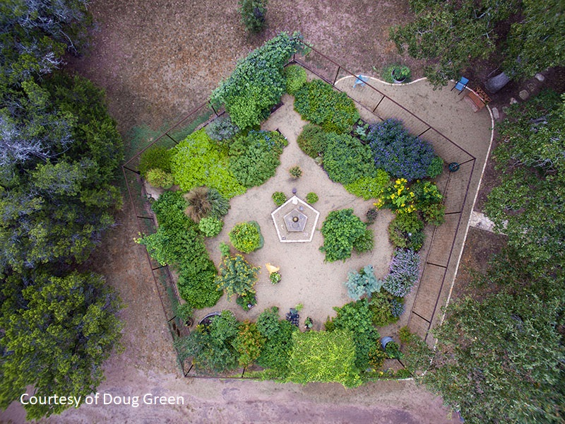 Doug Green pentagonal garden deer proof butterfly and bee habitat Central Texas Gardener