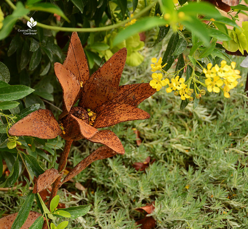 metal flower sculpture with butterfly vine flowers Doug Green habitat garden Central Texas Gardener