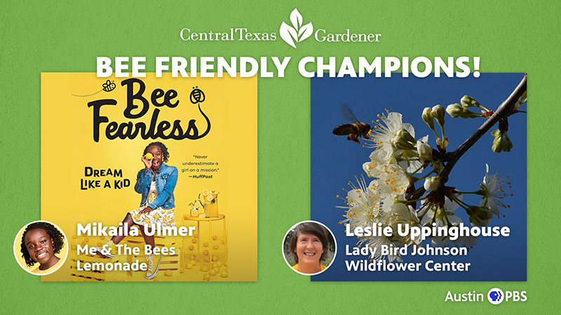 Bee Champions Mikaila Ulmer and Leslie Uppinghouse Central Texas Gardener