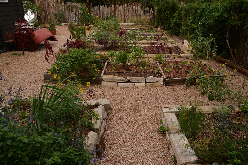 raised vegetable beds organic garden Meredith Thomas