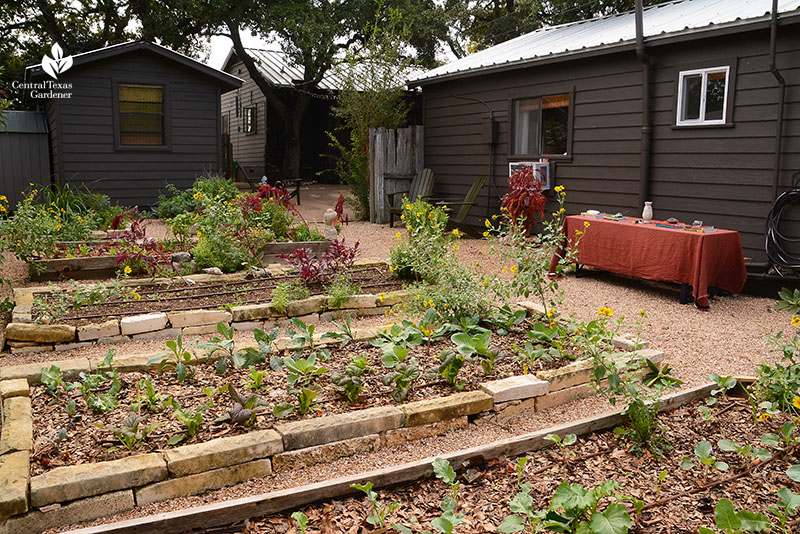 Raised vegetable and herb beds organic garden Meredith Thomas