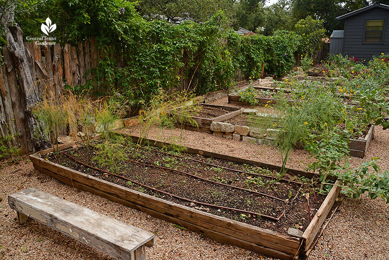 raised vegetable beds stone wood wild plants fall vegetables summer flowers Meredith Thomas