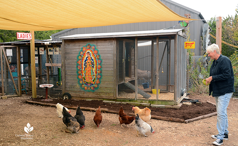 Chicken coop cute and safe design Kay Angermann