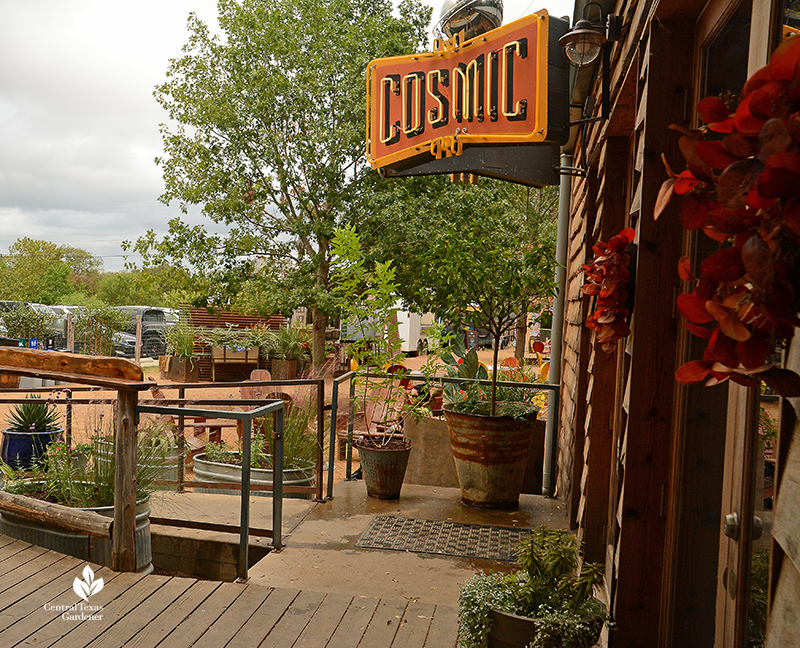 Cosmic Coffee + Beer Garden entrance Central Texas Gardener