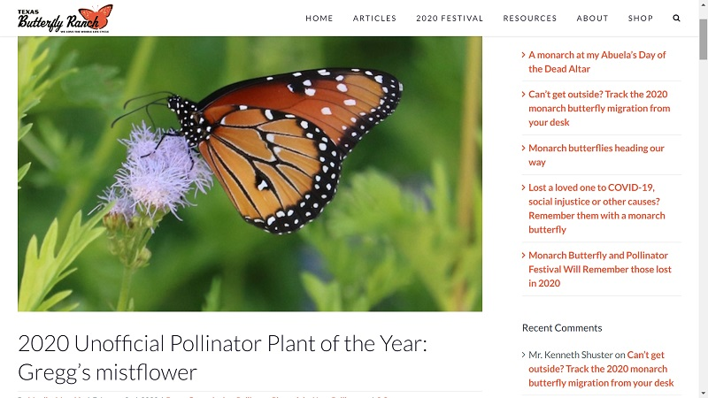Habitat and pollinator resources The Texas Butterfly Ranch