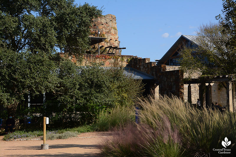 Lady Bird Johnson Wildflower Center tower muhly grasses Central Texas Gardener
