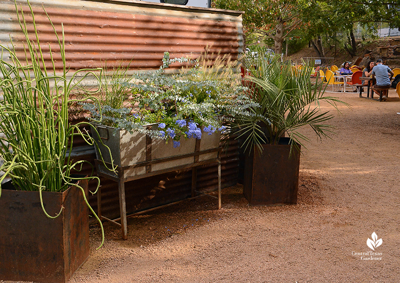 Planter design recycled and metal containers foliar texture patio Cosmic Coffee + Beer Garden