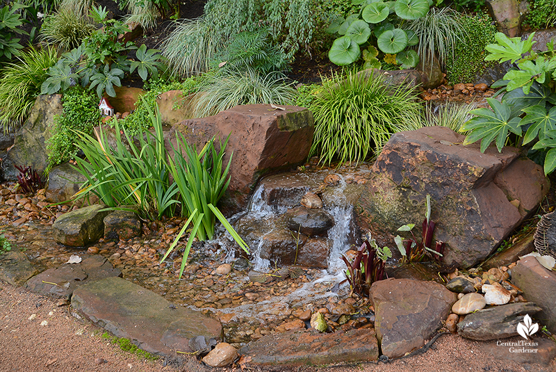 no algae ecological pond stream waterfall Texas Ponds and Water Features Cosmic Coffee