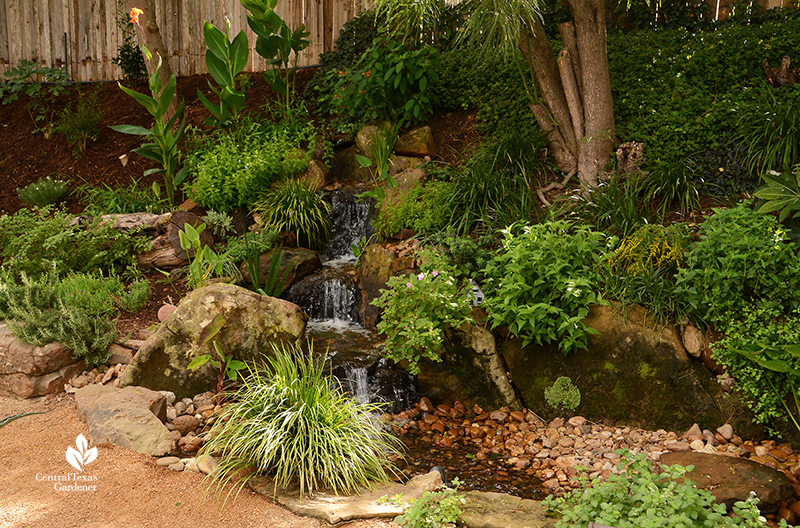 Texas Ponds and Water Features waterfall TaraRose plant design Cosmic Coffee