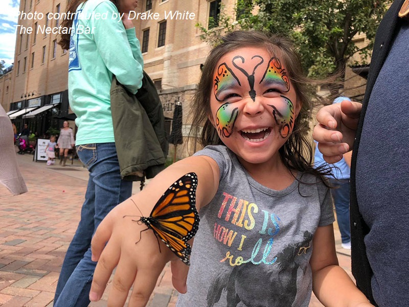 child with Monarch butterfly Monarch Butterfly and Pollinator Festival