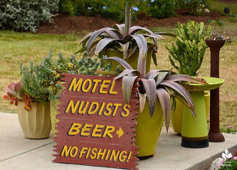 funny motel spoof sign container plants setting Julie Nelson Kay Angermann garden