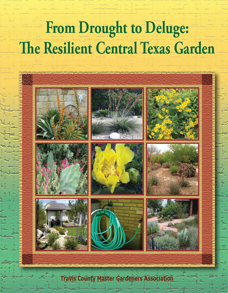 Drought to Deluge: The Resilient Central Texas Gardener