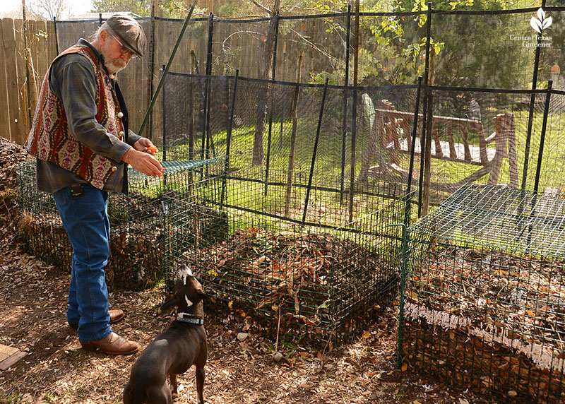 John Dromgoole compost dog Lobo Central Texas Gardener