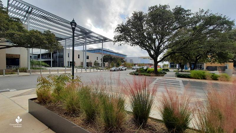ACC Highland Mall, Austin PBS studios Jacob Fontaine Plaza Central Texas Gardener