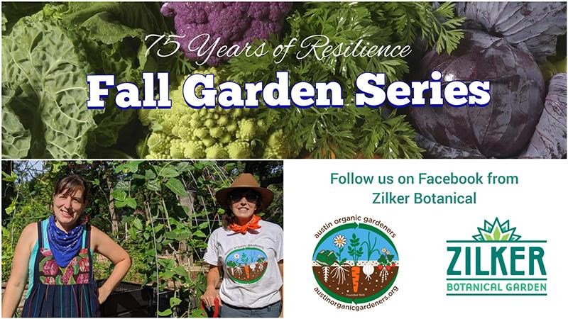 Austin Organic Gardeners Fall Garden Series Central Texas Gardener