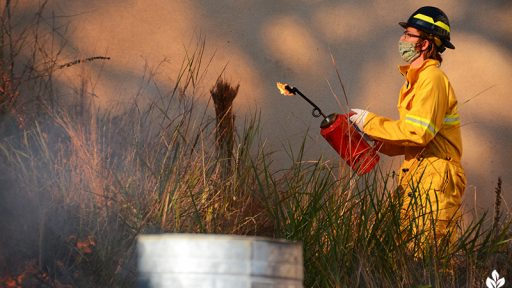 Jack Rouse Half-Pint Prairie control burn University of Texas_Central Texas Gardener