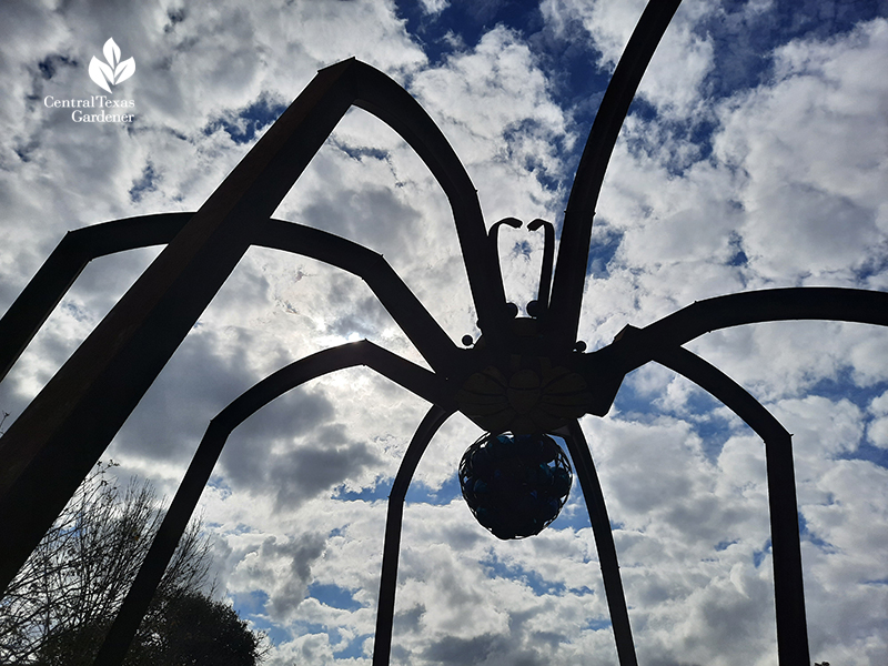 """Arachnophillia"" spider sculpture Dixie Friend Gay Mueller living Central Texas Gardener"