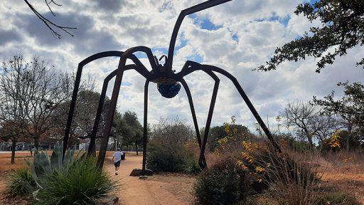Arachnophillia spider sculpture Dixie Friend Gay native plants Mueller development Central Texas Gardener
