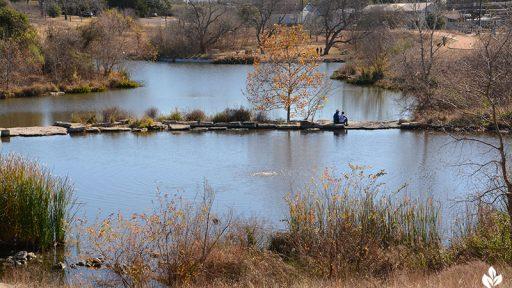 Native grasses trees Mueller retention pond winter colors Central Texas Gardener